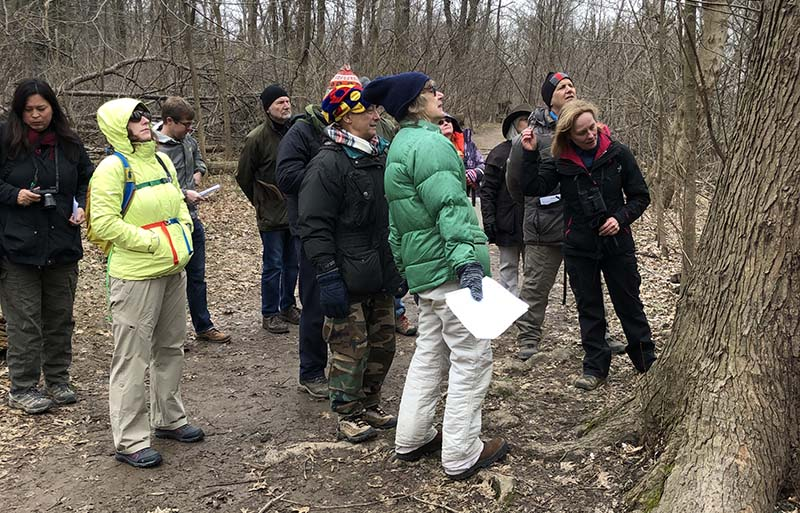 Friends of Theodore Roosevelt Island offers walking tours.