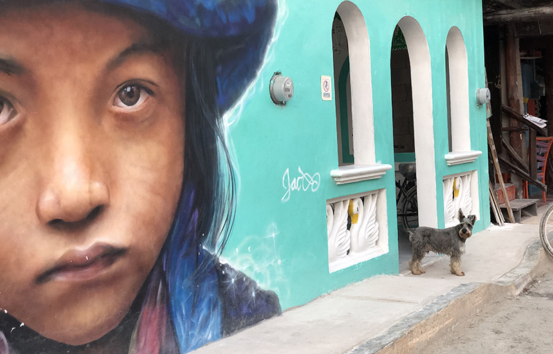 Holbox street art features a young Mayan girl.