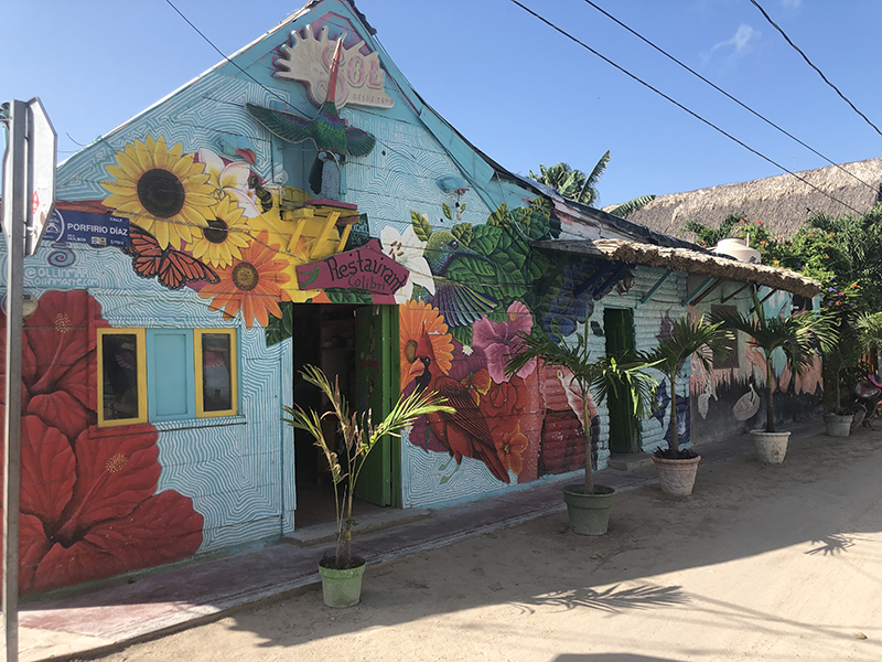 Holbox street art features exotic flowers.