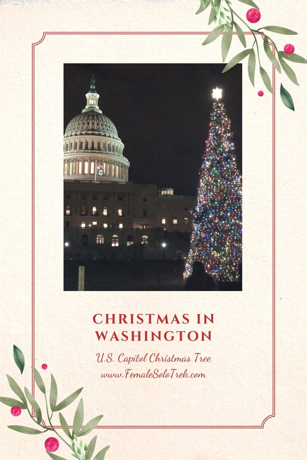 The U.S. Capitol Christmas tree features a different type each year.