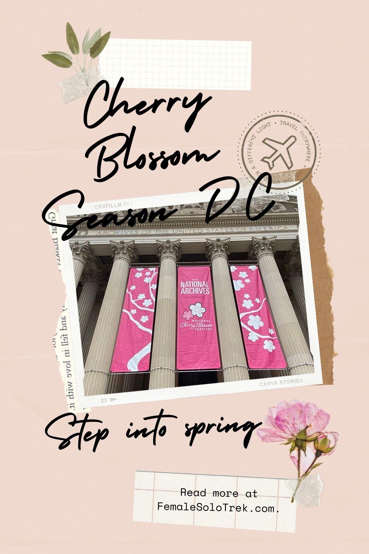 2021 National Cherry Blossom Festival Guide