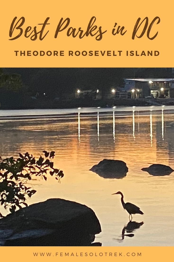 Theodore Roosevelt Island offers a natural retreat in Washington DC.
