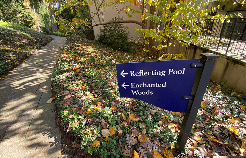 The Enchanted Woods at Winterthur features special programs for children.