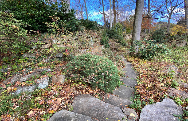 Wild Winterthur Gardens features curving paths.