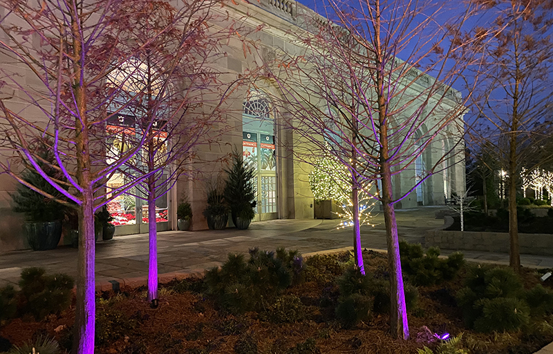 U.S. Botanic Gardens feature holiday magic.