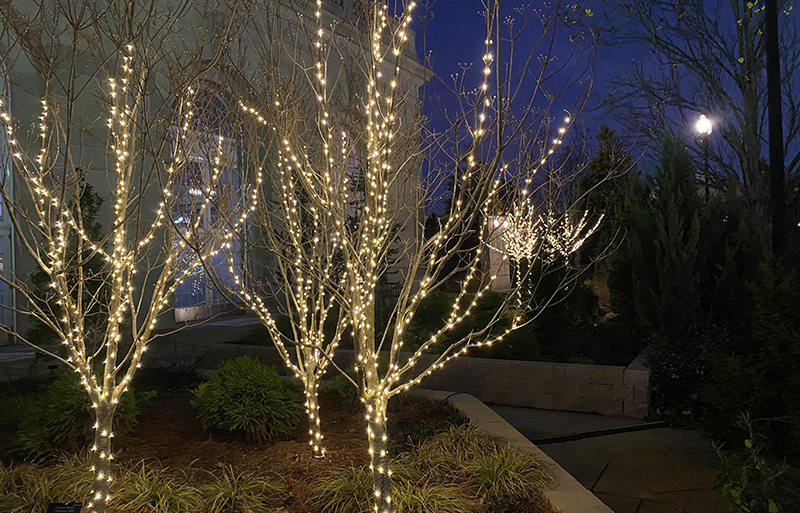 U.S. Botanic Garden features holiday lights in exterior gardens.