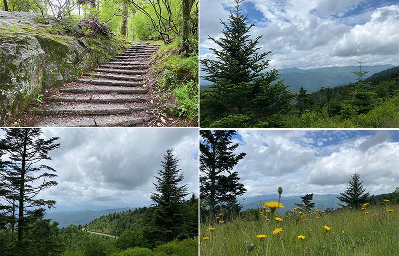 Blue Ridge Park vistas