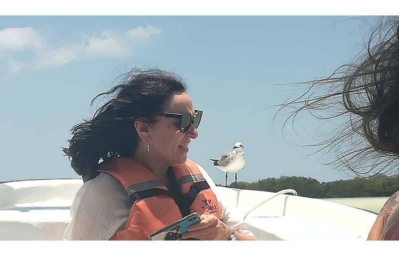 Isla Holbox escape bird tour