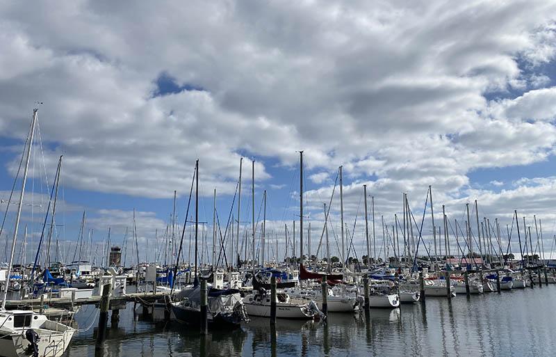 St Pete Florida Harbor