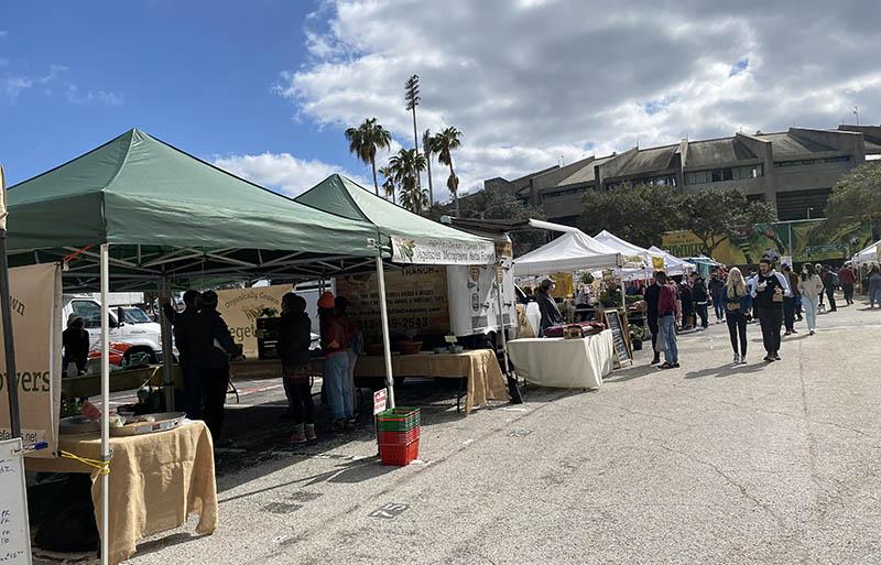 St Pete Florida Farmers Market stands