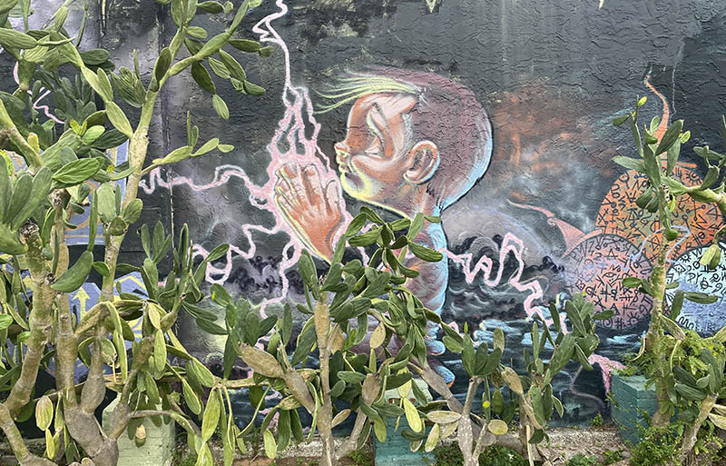 St Pete Florida_Fantasia mural