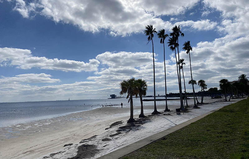 St Pete Florida Beachfront