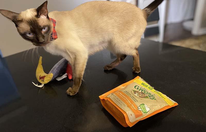 Traveling cat snacks
