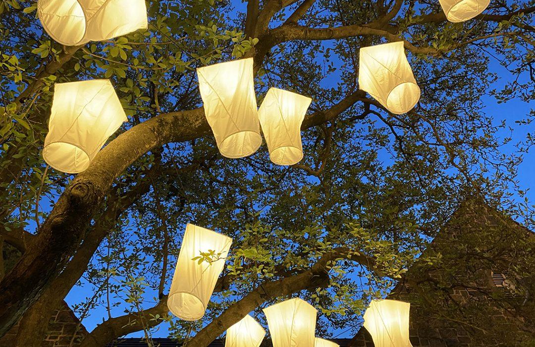 Georgetown GLOW Spring Edition art installation